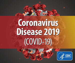 "An image of the coronavirus virus with logo, ""Coronavirus disease, 2019 (Covid-19)"" from the CDC."